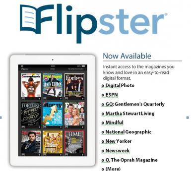 Flipster poster