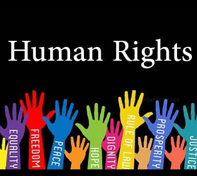 """graphic of hands labeled with words like """"peace"""" and """"freedom"""" reaching upwards toward the words """"Human Rights"""""""