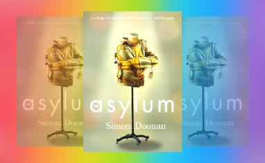 Simon Doonan's Asylum book cover